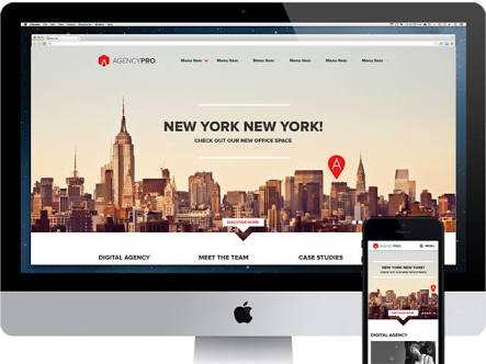 Agency pro theme review