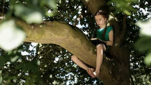 girl reading book sitting on a tree